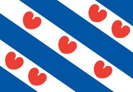 – Voucher mkb Friesland – Professionaliseren Fries mkb